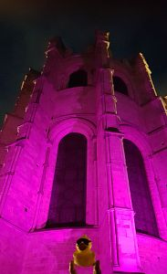 Canterbury Cathedral, purple for polio