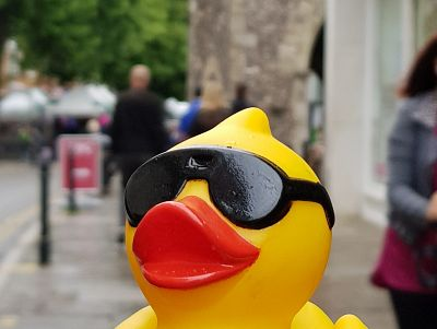 Duck Race 2018 - last day in town!